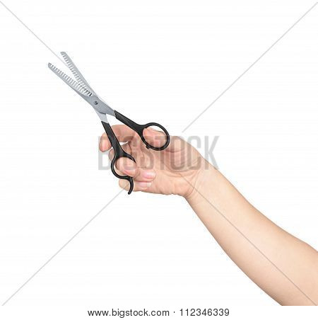 The Hand Holds The Scissors For Thinning Out On An Isolated White Background