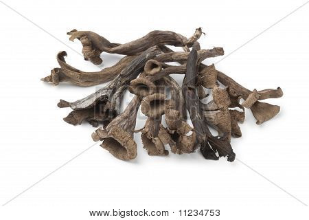 Cogumelos inteiros e frescos Horn of Plenty