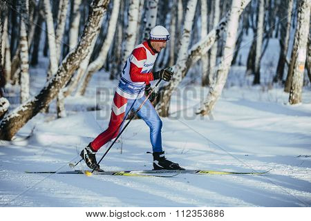 old athlete skier classic style in a winter birch forest