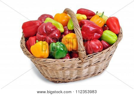 Harvested Ripe Peppers In The Basket