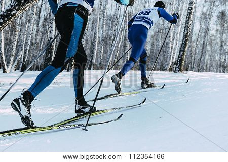 closeup feet two skiers in sprint classic style in winter forest