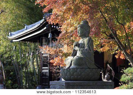 Autumn leaves in Hase temple, Kamakura, Japan