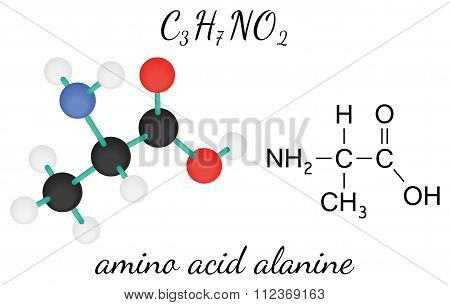 C3H7NO2 alanine amino acid molecule