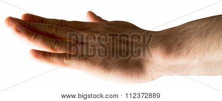 Human hand on white