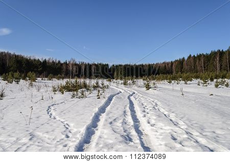 Large Snow Glade In Winter Forest