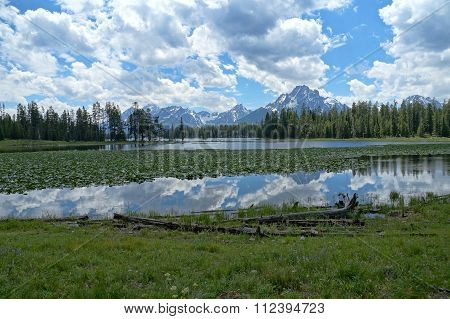 Heron Pond and Jackson Lake with water lilies and reflections of beautifully structured clouds.