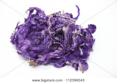 Violet piece of Australian sheep wool Merino breed close-up on a white background.