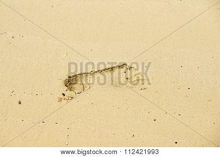 Single Step On Sand