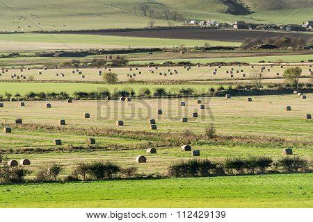Haybales in Perthshire Farmland