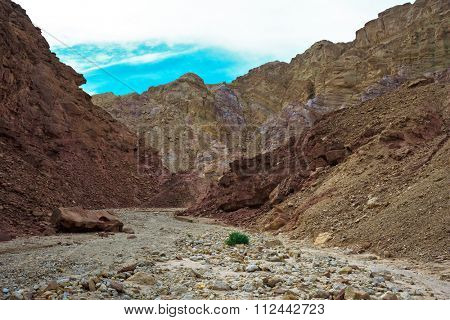 Gorgeous warm day in January. Mountains of Eilat, Israel. The road to the