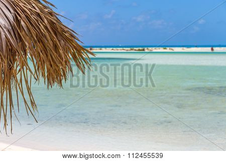 Beach Umbrella on exotic beach