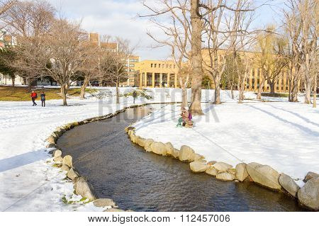 Winter scenery of the Hokkaido University