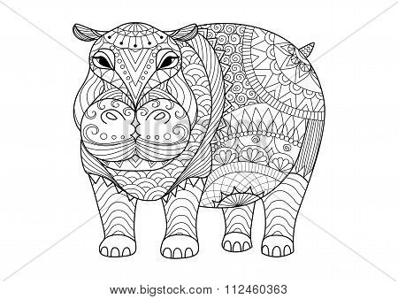 Hippo For Coloring Book