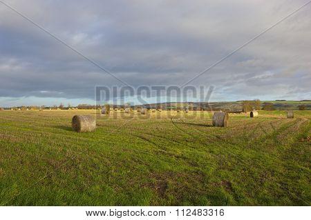 Round Bales In Winter
