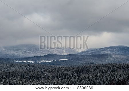 Winter landscape, snow covered forest in front of the mountain range. Stormy clouds.