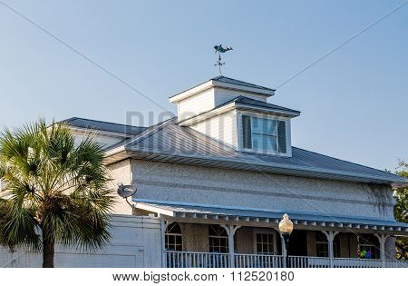 Palm Tree By Roof And Cupola