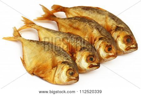Dry Scaled Sardine Fish