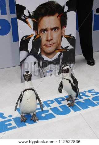 Penguins at the Los Angeles Premiere of