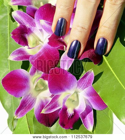 bright colored photo of fingernails with manicure and orchids ma