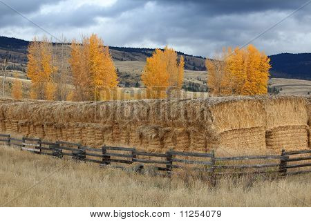 Nicola Valley Haystacks, British Columbia