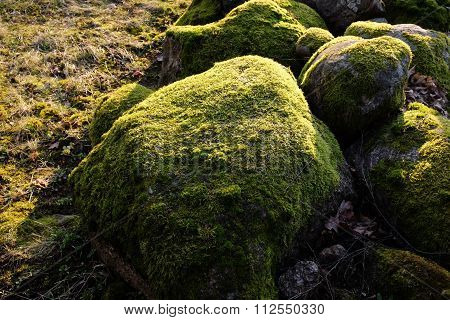 Overgrown With Moss Stones
