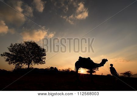 Silhouette of the Camel Trader crossing the sand dune