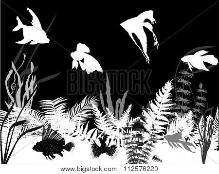 illustration with fishes in algae
