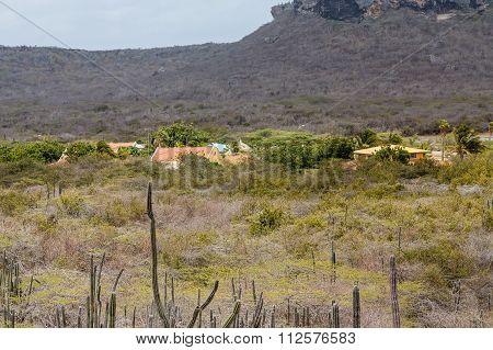 Curacao Village