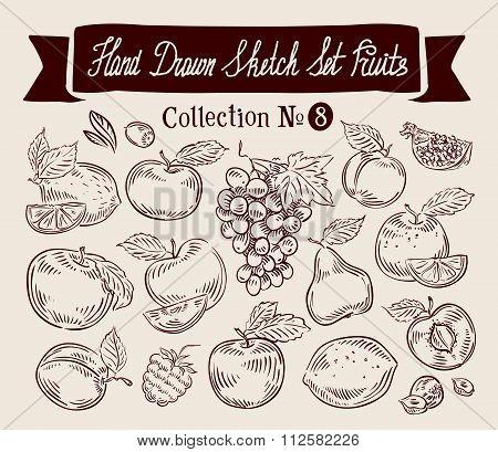 Fruits. Hand drawn sketch set vector illustration