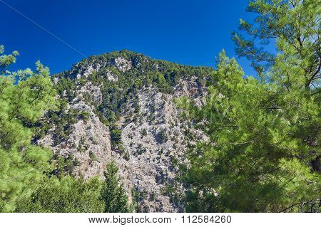Lefka Ori - rocky sewn in the White Mountains