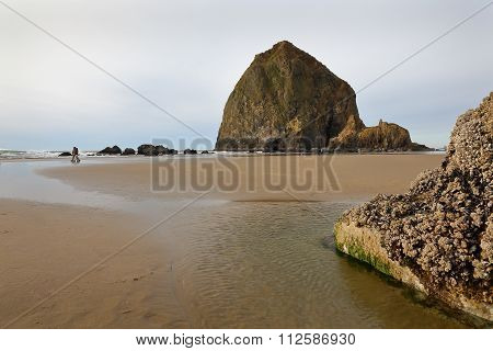 Haystack Rock, Cannon Beach, Oregon, USA