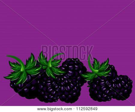 Blackberries delicious dessert