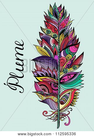 Color Plume With Lettering. Vector Illustration.