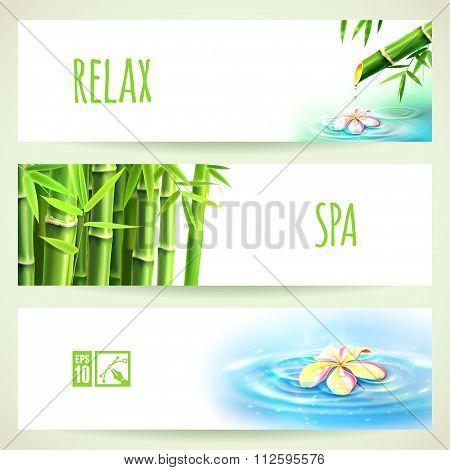 Set Of Horizontal Bamboo Banners. Vector Illustration, Eps10, Editable.