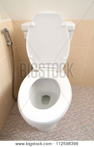 White Toilet Bowl