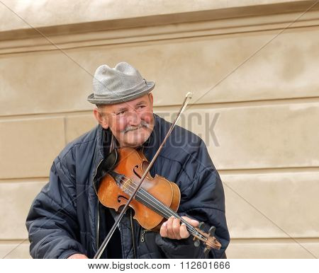 Old Man Playing The Violin, Front View