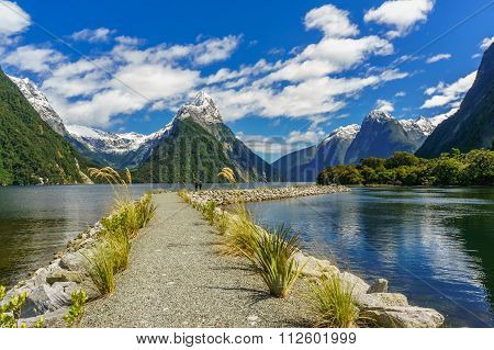 Pathway in the Milford Sound