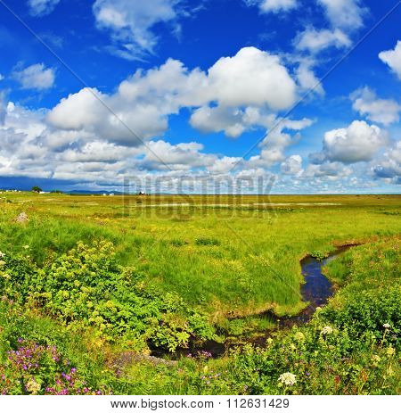 Iceland in July. Green fields and streams on a warm summer day
