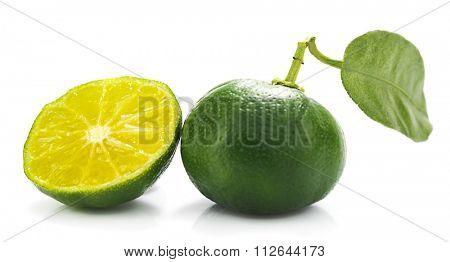 Hybrid Kumquat Tangerine with Slice