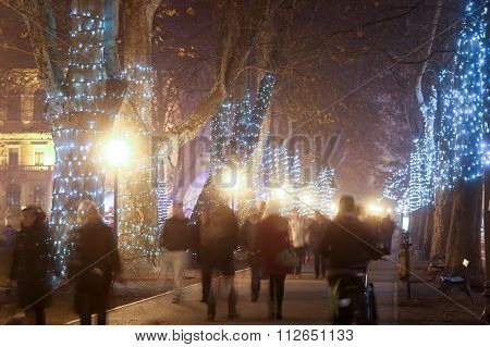 Decorated Plane Tree Alley On Zrinjevac