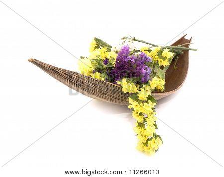 Statice Flowers - Limonium Sinuatum