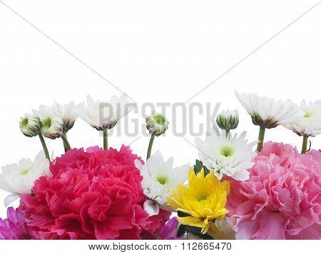Colorful Carnation Bouquet Flower