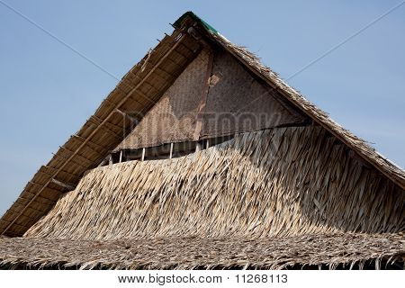 Leaves from coconut tree can make a roof