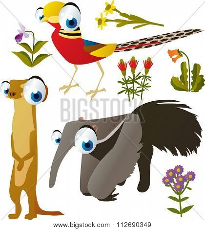 vector collection of comic cartoon styled animals for children. Set of Pheasant, Meerkat, anteater