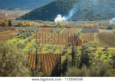 Smoke From Fires In The Agricultural Fields On Peloponnese In Greece
