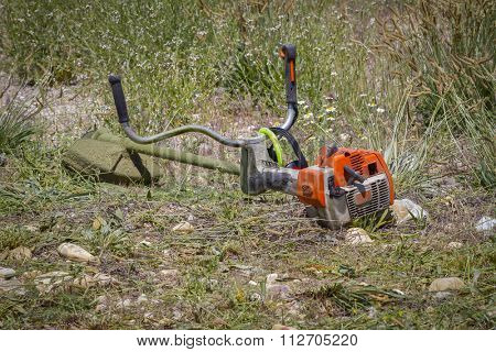 brush cutter, cutting weeds in a garden