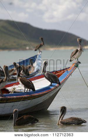 South America Venezuela Isla Margatita Juangriego Beacg