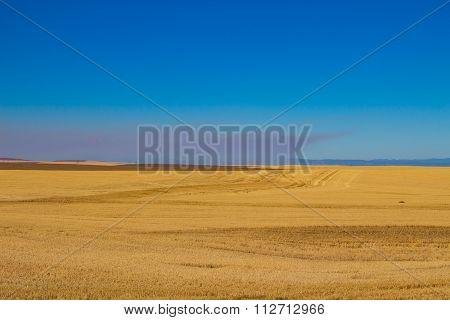 Eastern Oregon Prairie