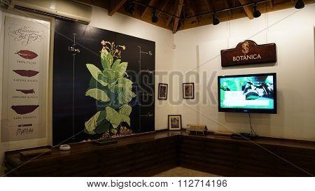 Cigar Factory in La Romana, Dominican Republic
