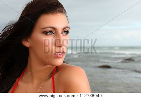 Brunette Gazing Into The Distance